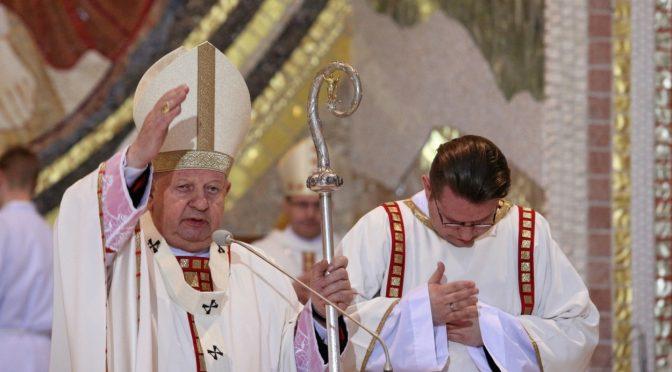 W służbie Kościołowi powszechnemu, Archidiecezji krakowskiej i Fundacji Jana Pawła II